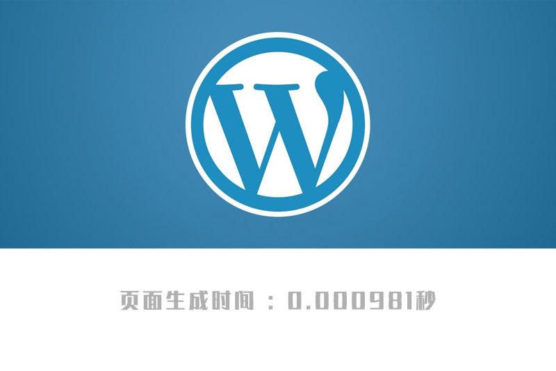 WordPress timer_stop